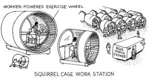 DM-Squirrelcagecubicles